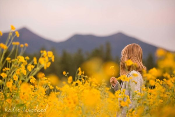 Flagstaff Summer Katie Woodard Photography