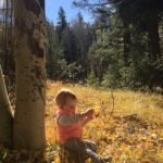 5 Best Northern Arizona Hikes for Outdoor Families