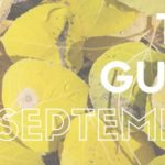 The Guide: September