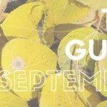 The Guide: September