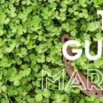 The Guide: March