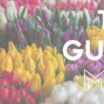 The Guide: May